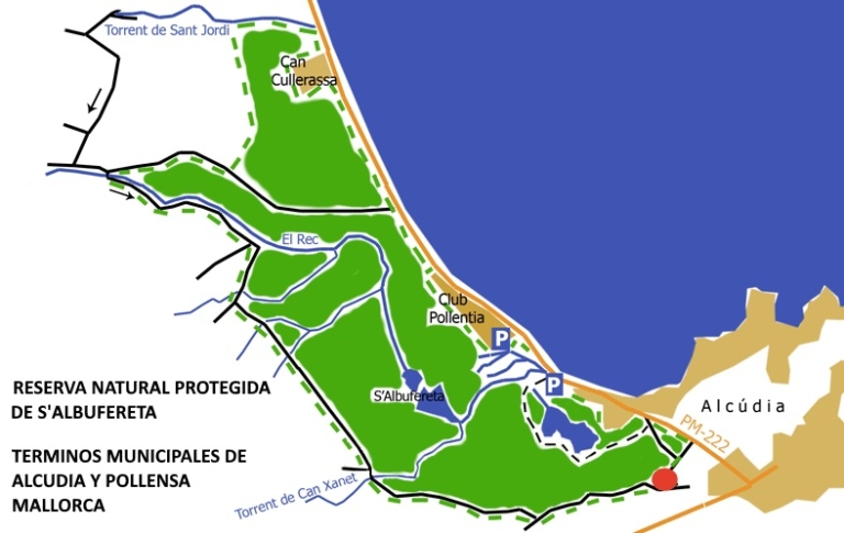 protected area in Pollensa Bay and kite lessons in Mallorca legalized kiteschool