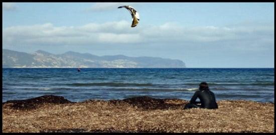 7 alguien debería vigilarte cuando haces kitesurfing