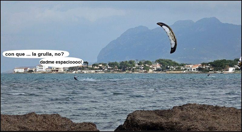 algas mar y viento Asociacion Aprende a Navegar