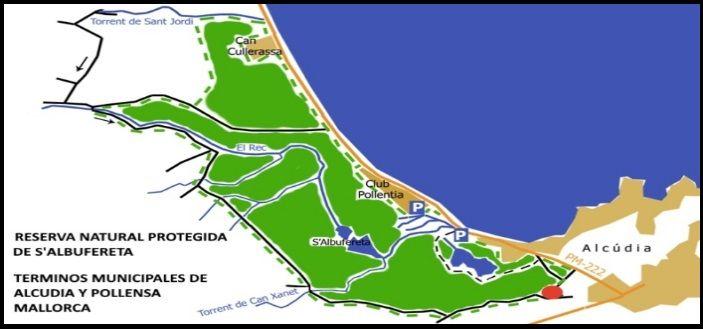 mallorca kiteschule Naturpark S'Albufereta kitesurfing Gebiet