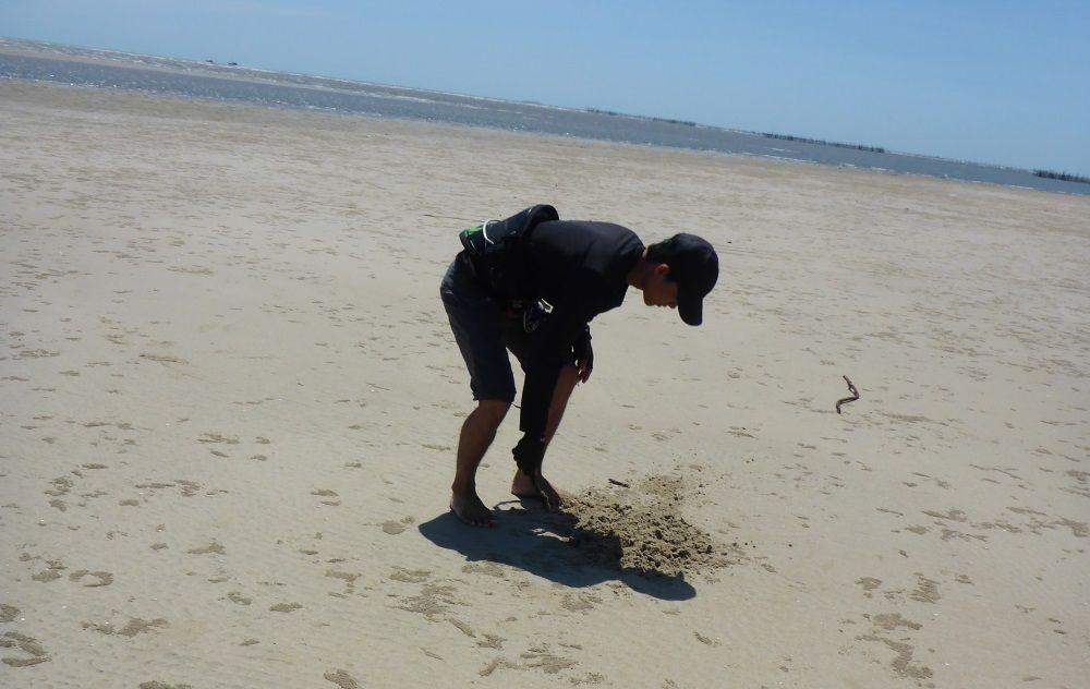 1 grabe ein Loch und hol etwas Sand