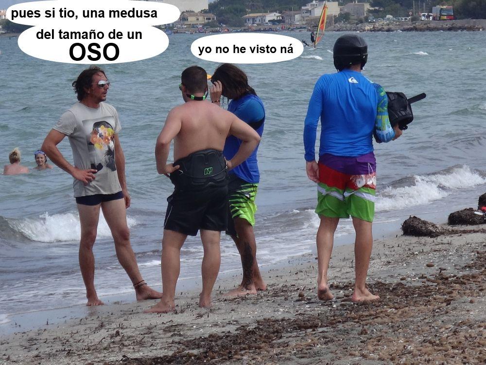 32 cursos de kitesurf en Mallorca - reunion de pastores ...